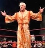 Nature Boy Ric Flair / Headline Surfer