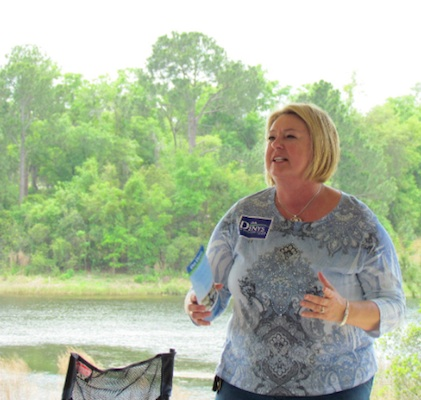 Deb Denys, incumbent County Councilwoman for district 3 skipped debates / Headline Surfer®