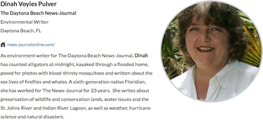 Dinah Pulver, Daytonna Beach News-Journal recognized for environmental reporting / Headline Surfer®