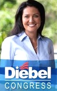 Karen Diebel ran for Congress in 2010 / Headline Surfer®