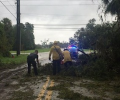 Edgewater crews clear a road of debris from Hurricane Matthew / Headline Surfer