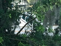 Plane crashes near New Smyrna Beach, FL / Headline Surfer