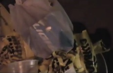 Beer containers stuffed in trash on Flagler Ave in NSB during New Year's / Headline Surfer