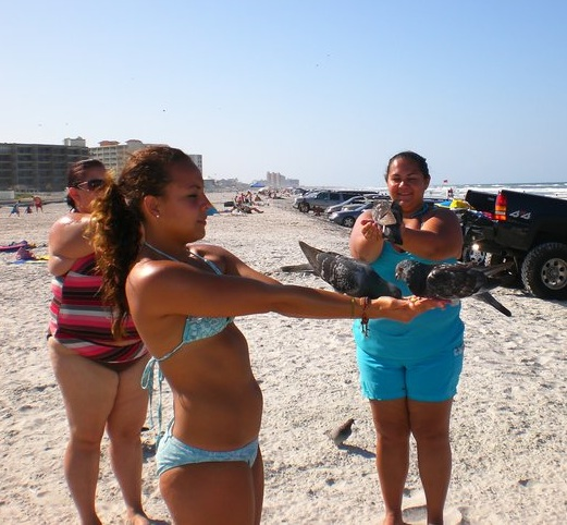 These young gals feed birds on beach of New Smyrna